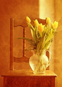 tulip-bouquet-1715054_960_720